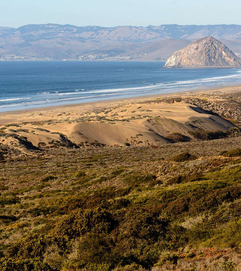 WALK TO THE BEACH, POPULAR RESTAURANTS, AND SHOPS TOP ATTRACTIONS NEAR OUR MORRO BAY HOTEL